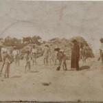 """Anno 1900: Sacerdote assiste alla """"Mietitura del grano"""" nell'Azienda agricola della Famiglia Losapio a Bisceglie (BA)"""