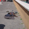 the best photos of the day. sleeping in Rome, between area San Juan-Coliseum 2007