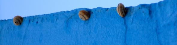 the best photo of the day. Salento, Puglia_2013